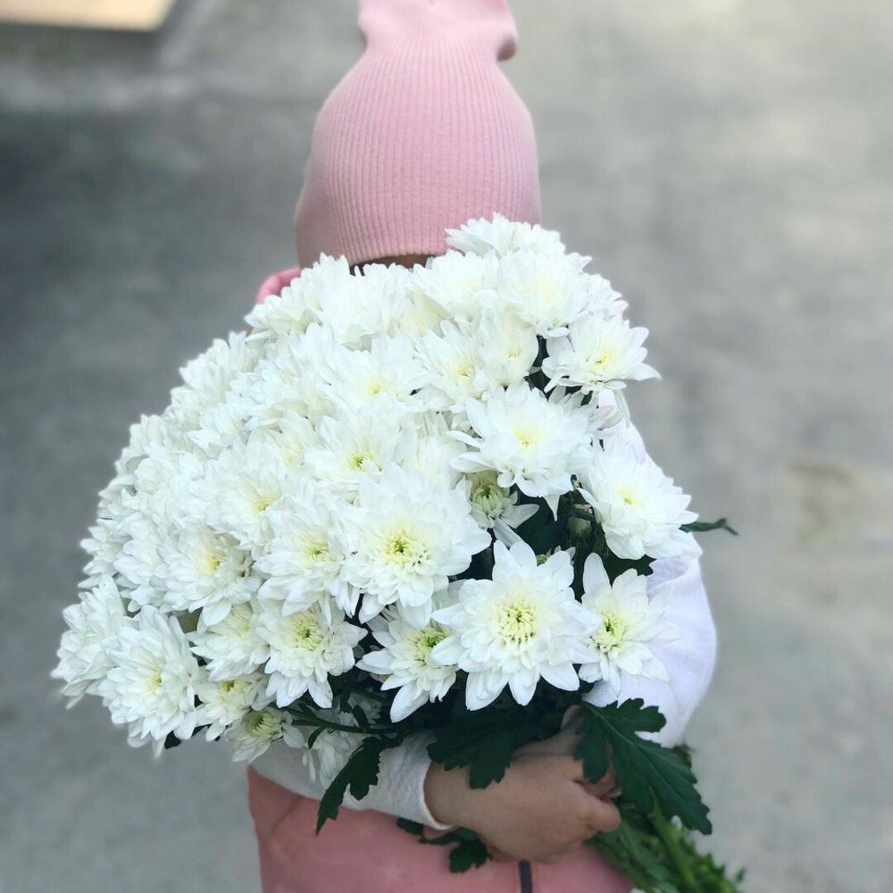 Невесты, цветы оптом в славянске на кубани