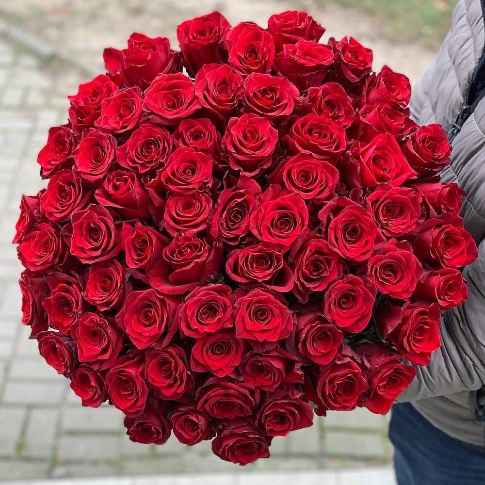101 роза бордо для инночки картинки запросу настенные