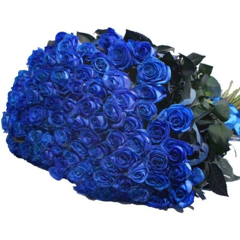 Картинки букет синих роз, открытки