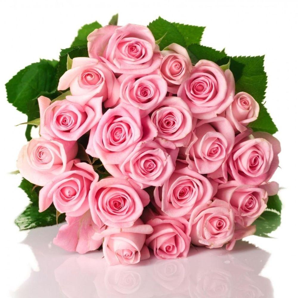 Девушки, открытка букета роз