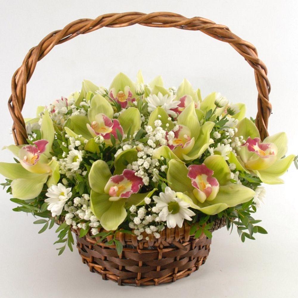 Букет корзина орхидей фото, трех