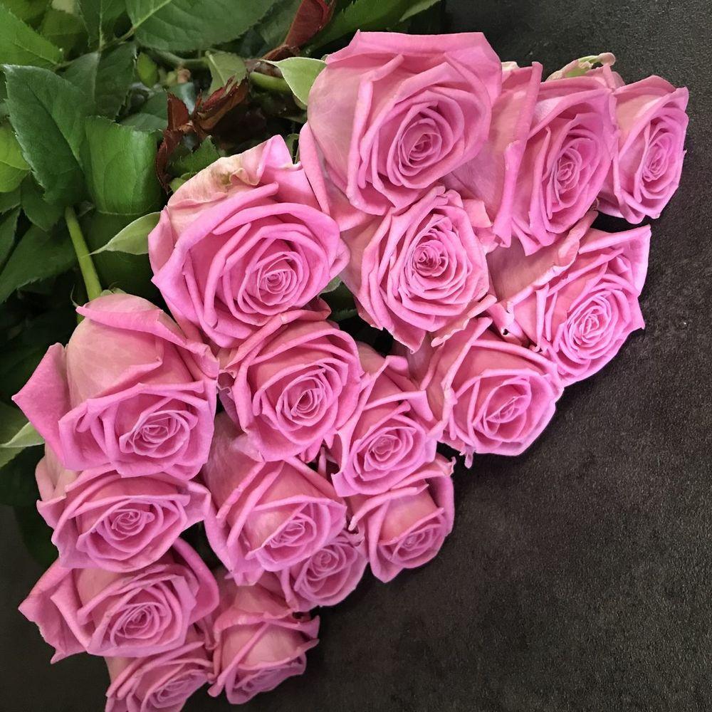 ядовито розовые розы фото оформить