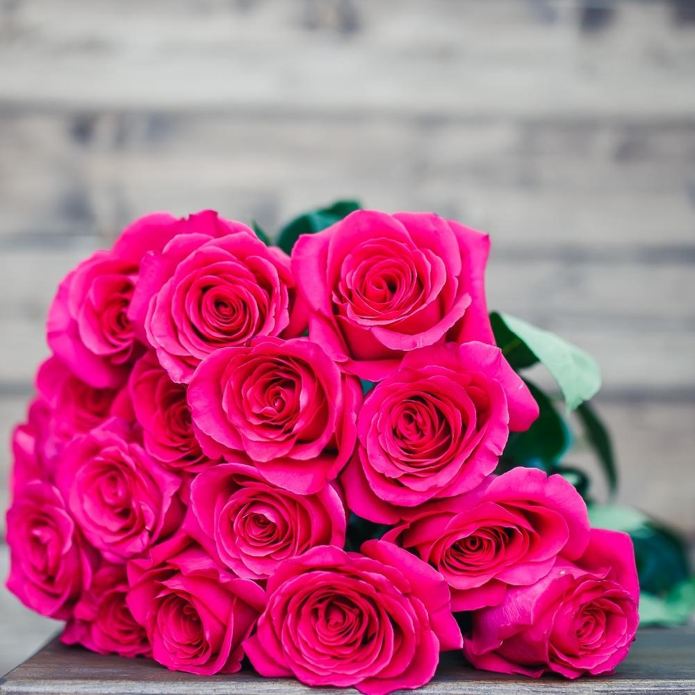 любом вышеуказанных малиновые розы фото букеты мебель