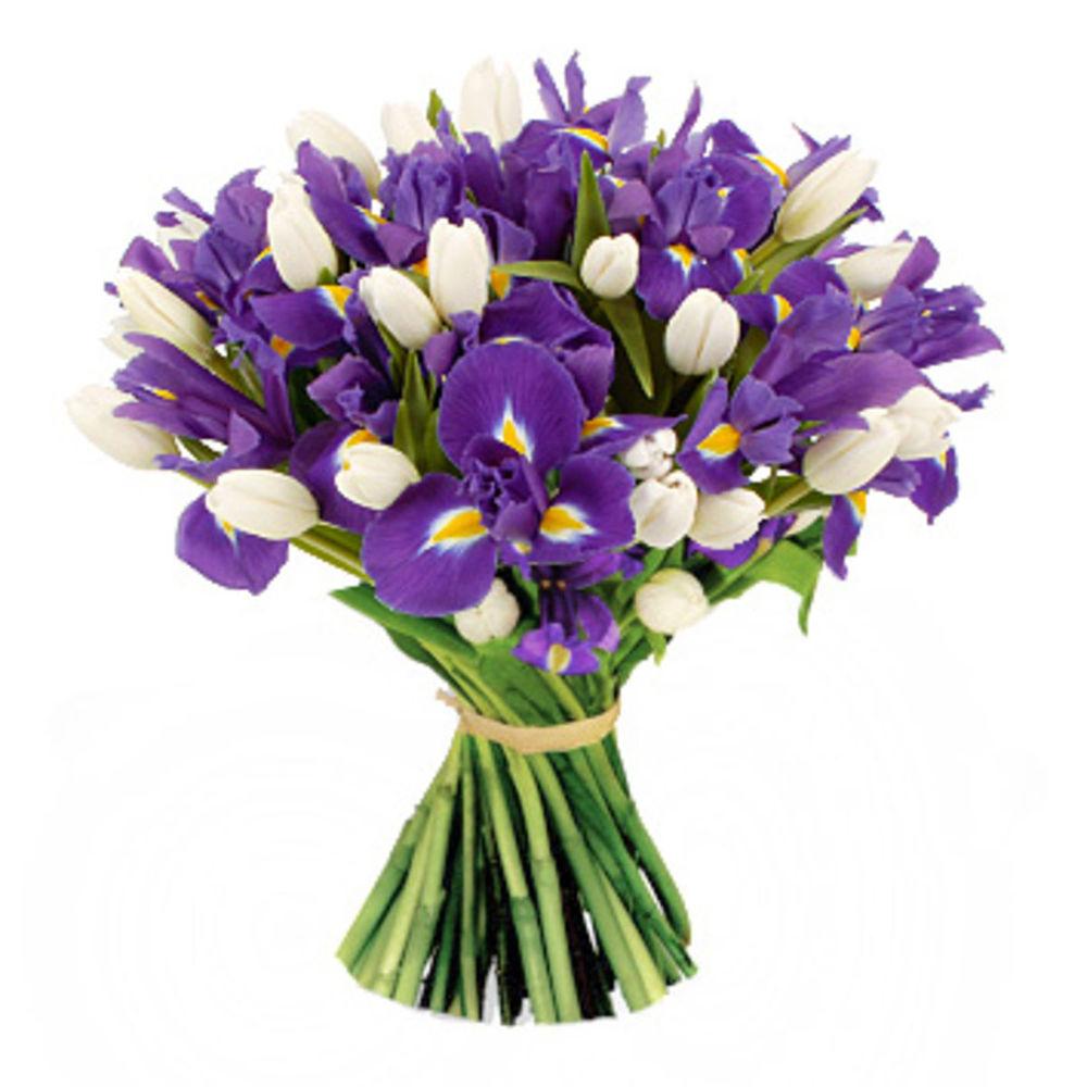Для новорожденного, картинки с тюльпанами и ирисами