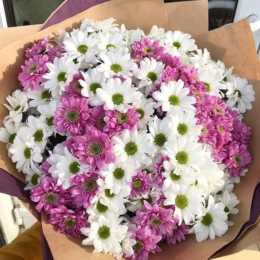 связи этим картинка шикарный букет хризантем сути