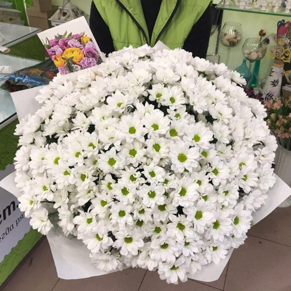 Интернет магазин цветов в заводоуковске