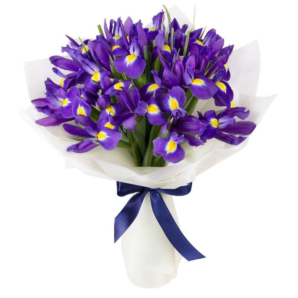 Купить цветы магазин ирисы в киев