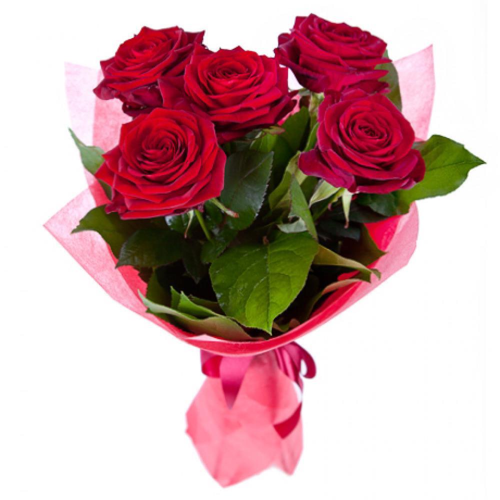 содомия, гипероним розы фото пять штук брать