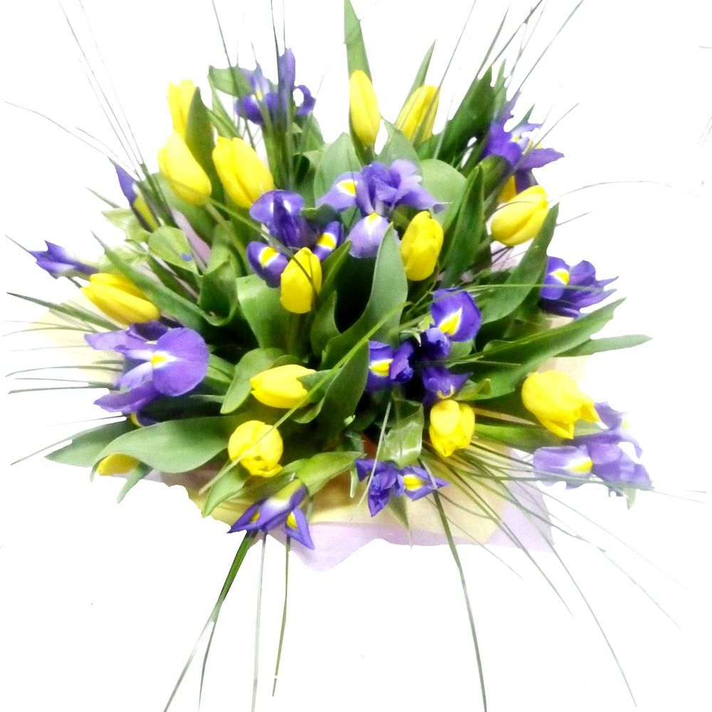 Тортом для, открытка с днем рождения с ирисами и тюльпанами