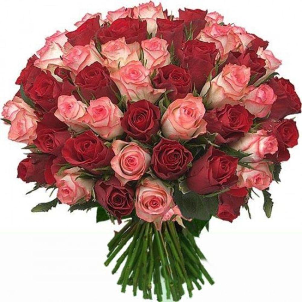 Картинки гладиолусов, открытка 35 роз