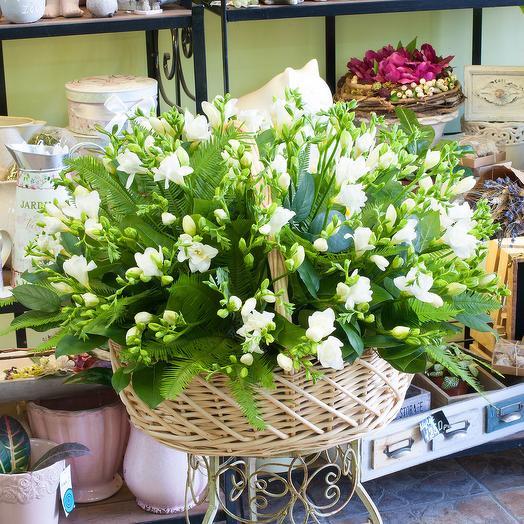 Корзина из белых фрезий (101 фрезия): букеты цветов на заказ Flowwow