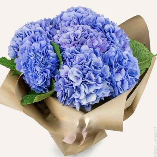 3 Синие Гортензии: букеты цветов на заказ Flowwow