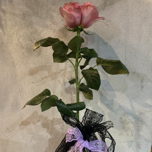 Корал экспрешен: букеты цветов на заказ Flowwow