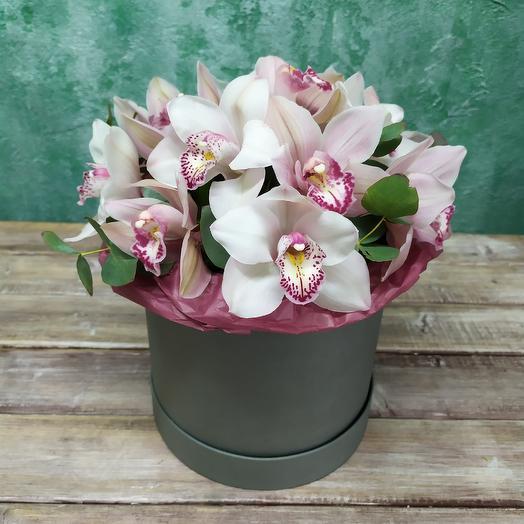 Орхидея в коробочке: букеты цветов на заказ Flowwow