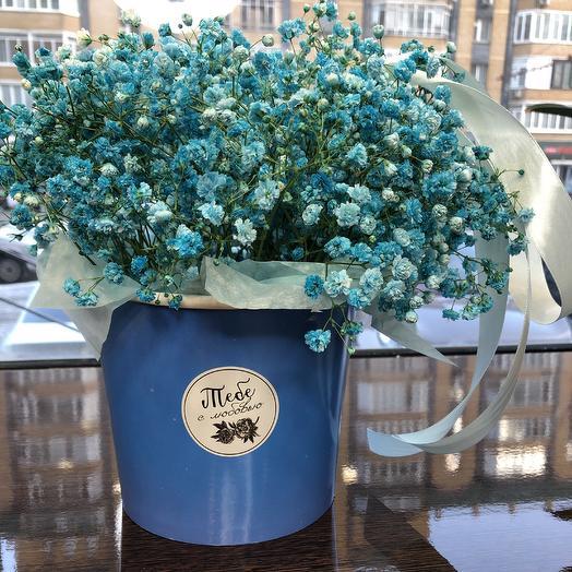 Попкорн: букеты цветов на заказ Flowwow