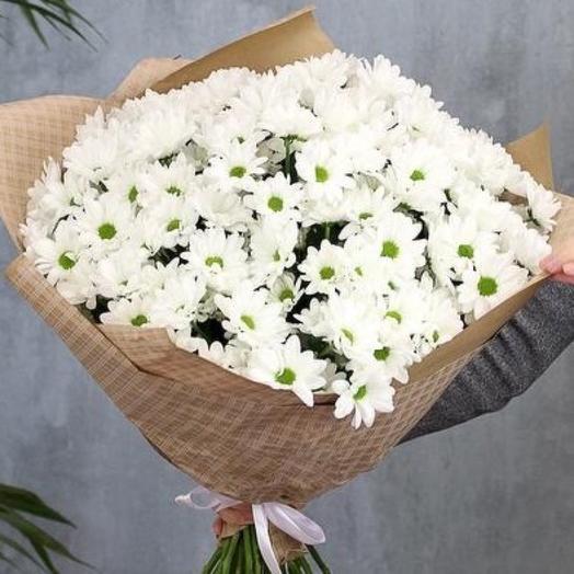 Букет «25 хризантем»