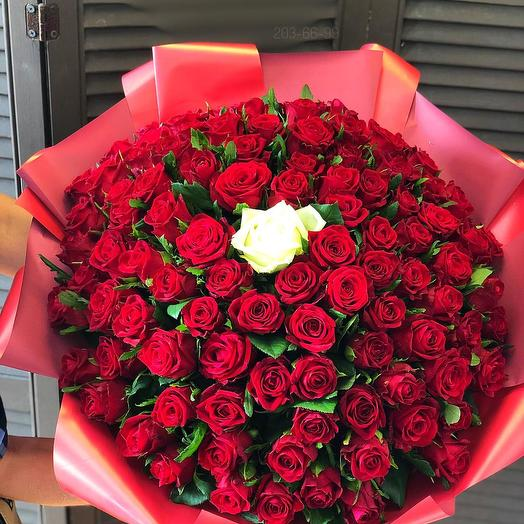 101 голландская роза 60 см с оформлением
