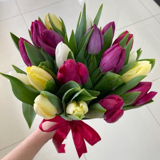 19 Tulips mix