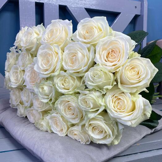 Роза Белая 11 штук 50