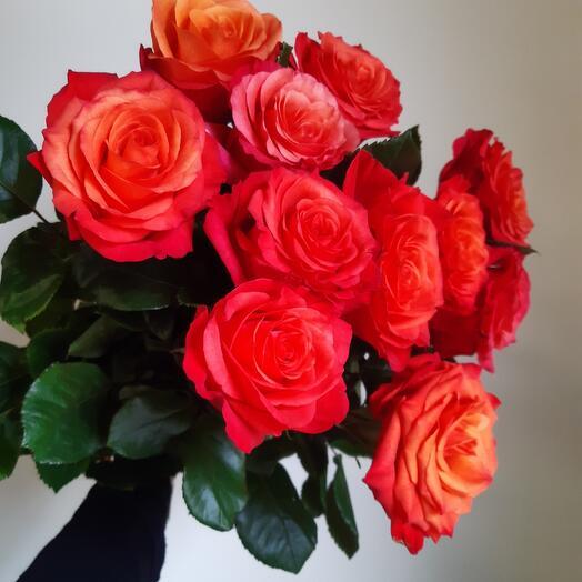 Моно из 11 роз