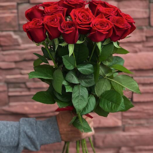21 бордовая роза