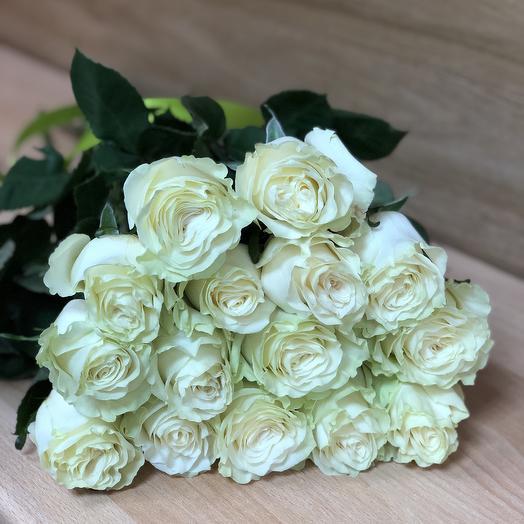 Роза «Мондиаль»: букеты цветов на заказ Flowwow