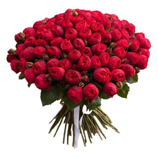 49 КУСТОВЫХ РОЗ РЭД ПИАНО: букеты цветов на заказ Flowwow