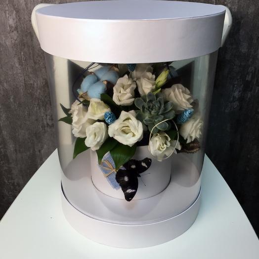 Живые бабочки в белой коробке: букеты цветов на заказ Flowwow