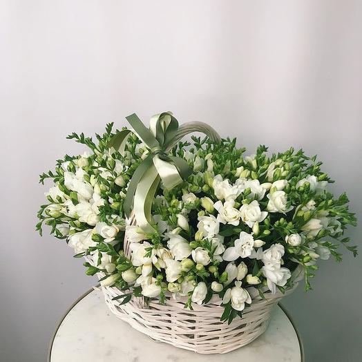 Изысканная фрезия: букеты цветов на заказ Flowwow