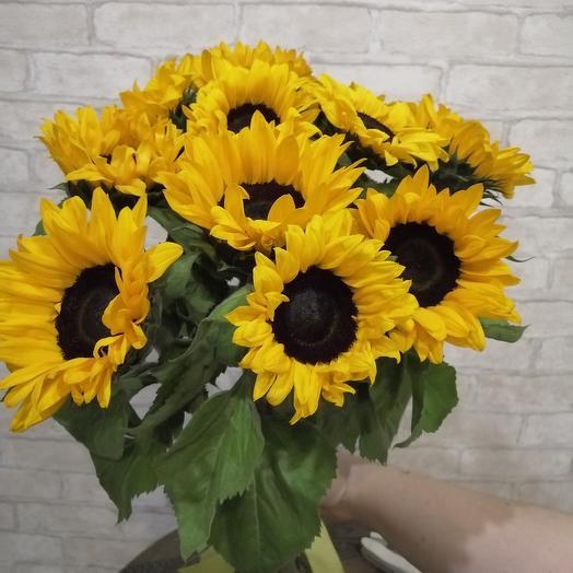 Букет из 11 подсолнухов: букеты цветов на заказ Flowwow