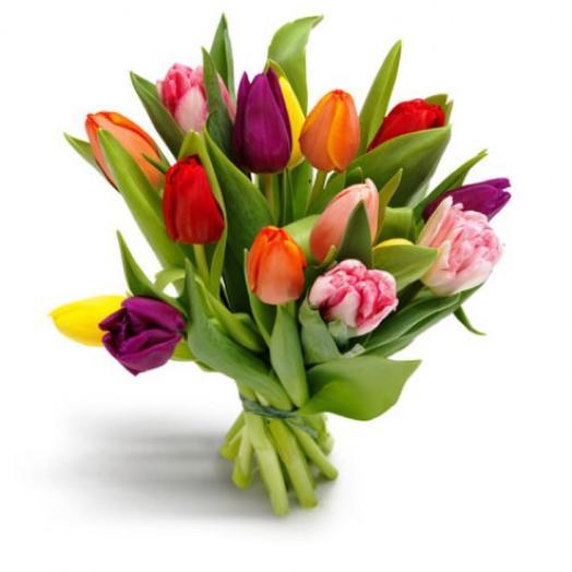 Тюльпаны микс 15 шт