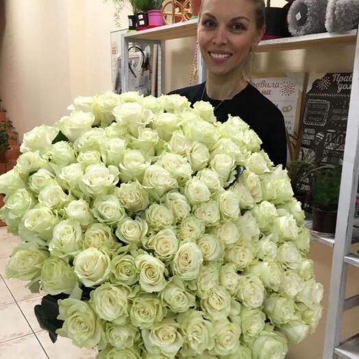 Розы 101  белая Аваланш