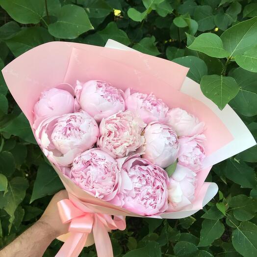 11 нежных пионов в розовой упаковке