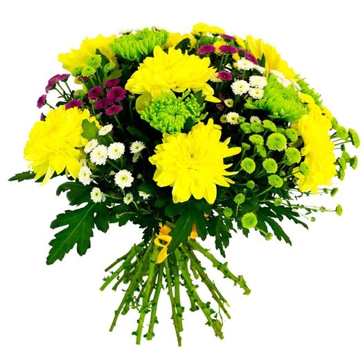 Bouquet of large and bushy chrysanthemums