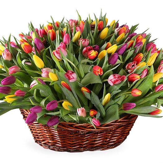 Корзина из 201 тюльпана: букеты цветов на заказ Flowwow