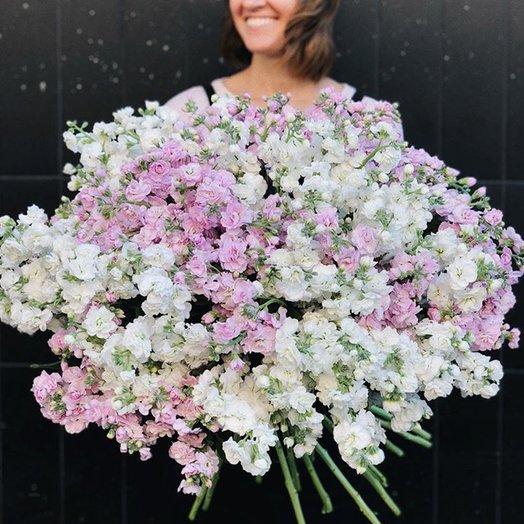 Душистый букет из матиоллы: букеты цветов на заказ Flowwow