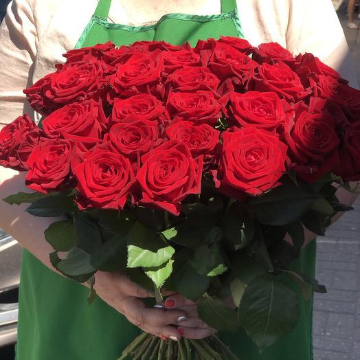Алое безумие: букеты цветов на заказ Flowwow