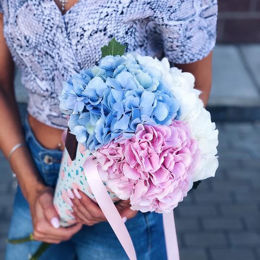 Кулёчек с гортензией: букеты цветов на заказ Flowwow