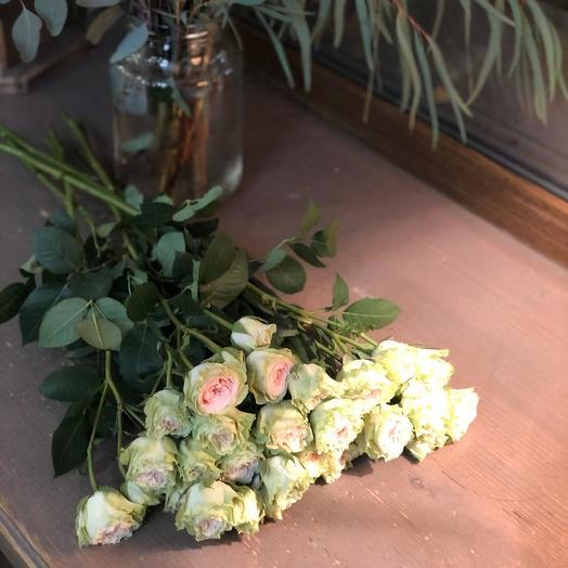 """кустовые розы """"ЛЕВИ"""""""