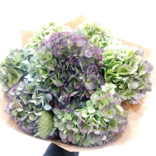 Пижон: букеты цветов на заказ Flowwow