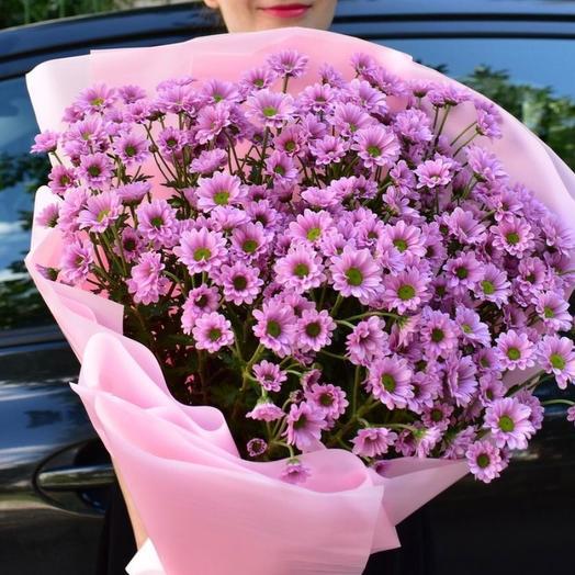Ромашки садовые 51 шт: букеты цветов на заказ Flowwow