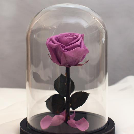Роза в колбе RozaRose Мини Сиреневая