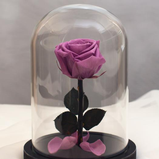 Роза в колбе RozaRose Мини Сиреневая: букеты цветов на заказ Flowwow