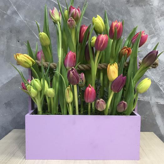 Тюльпановая полянка: букеты цветов на заказ Flowwow