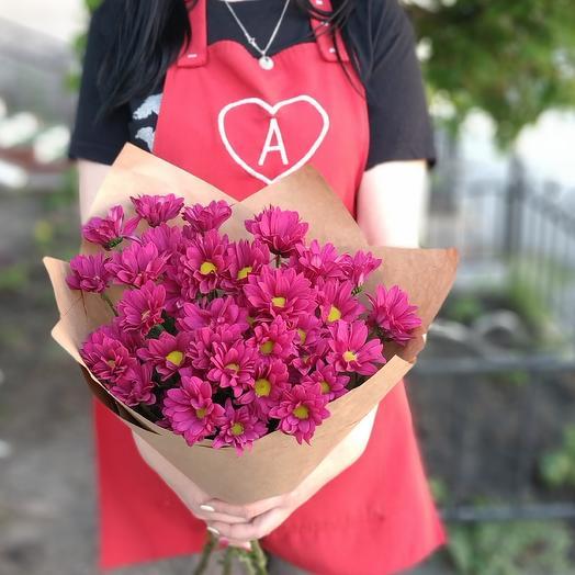 Малиновый день хризантемы малин