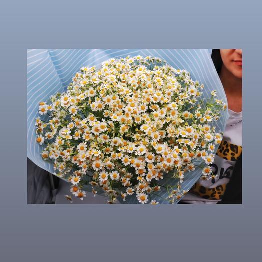 Букет из 21 ромашки: букеты цветов на заказ Flowwow