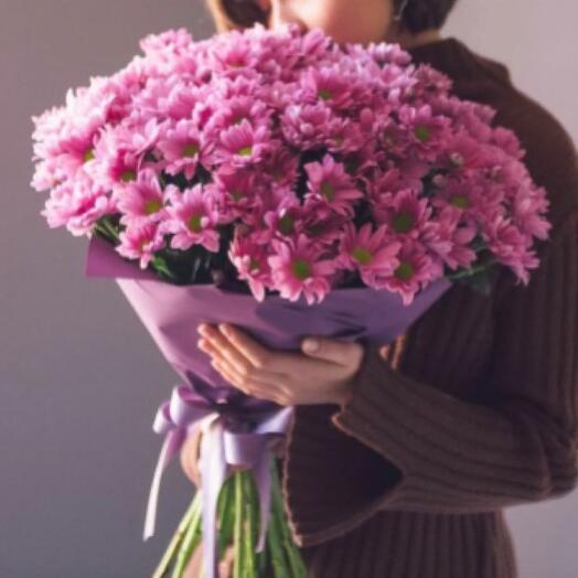 25 Хризантем Сантини Rossi Pink