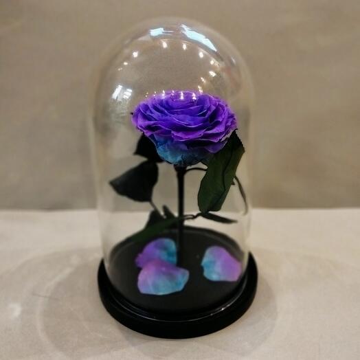Роза в колбе(в ассортименте)