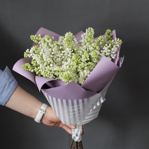 Букет из белой сирени: букеты цветов на заказ Flowwow