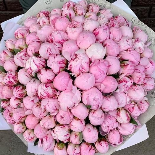 Букет из пионов 101 комплимент: букеты цветов на заказ Flowwow